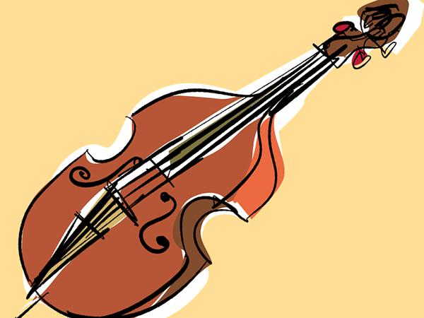 Kontrabass unterricht heidelberg sinsheim